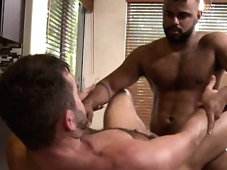 Gay bear dilf and hairy hunk fucking closeup bears (gay) blowjob (gay) gays (gay)