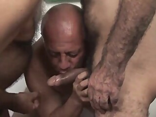 The white shirt and sex of three mature gays gay blowjob gay daddy gay group sex