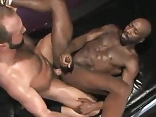 Interracial Striptease black bear big cock